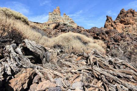 Volcanic landscape of Teide National Park in Tenerife Island, Spain.