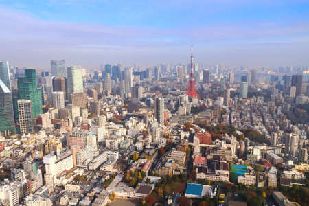 Tokyo skyline. Aerial view with Roppongi and Minato ward.