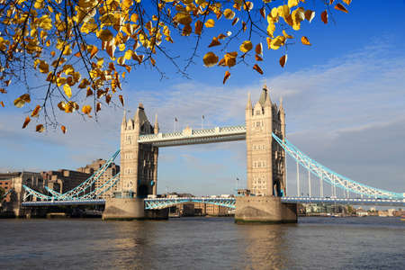 Tower Bridge in London UK. Autumn leaves.