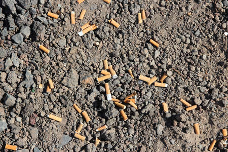 Cigarette butts on ground. Disgusting littering habit. Earth pollution.