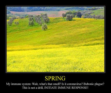 Allergy funny meme for social media sharing. Spring season allergic hay fever problems.