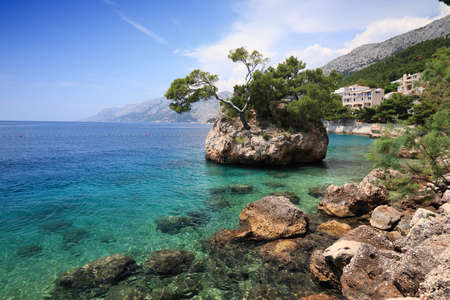 Brela rock, Croatia. Natural landmark rock island with sturdy pine trees. Punta Rata.