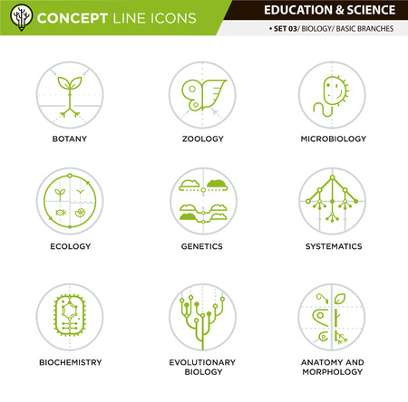 evolutionary: Brances of biology line icons in white isolated background used for school and university education and document decoration