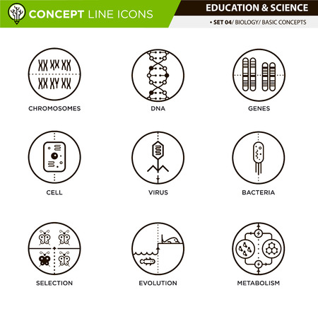 Biology basic concepts line icons in white isolated background used for school and university education and document decoration Illustration