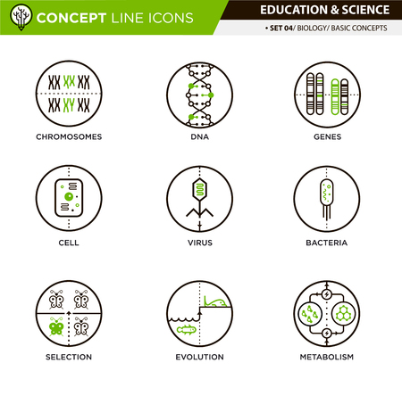 natural selection: Concept Line Icons Set 4 Biology