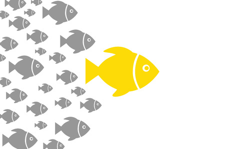 Leadership Concepts with Fish