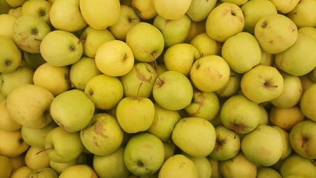 Lots of Green Yellow ripe apples background Stock Photo