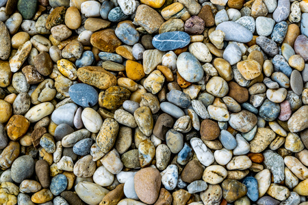 geologists: colorful multicolored pebbles