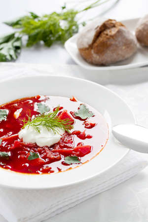 Ukrainian and Russian national borscht with herbs   spice