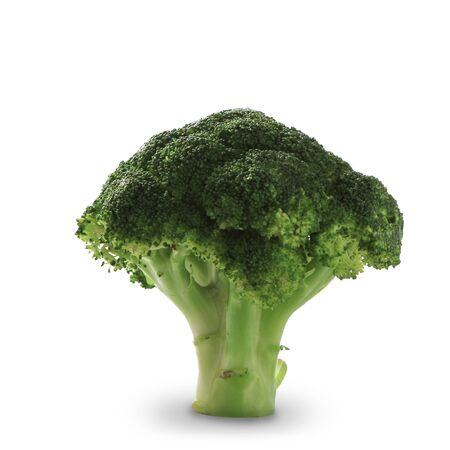 Broccoli isolated with clipping path on white background Stock Photo - 16834361