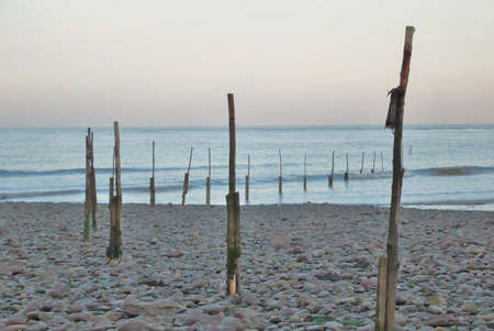 sea sticks at sunset at Minehead, South West England