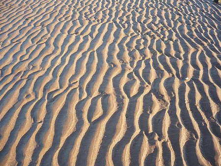 Ripples in the sand, South West England