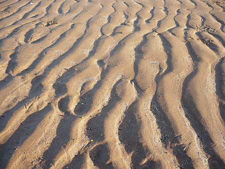 Ripples in the sand left by the tides