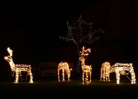artificial lights: Christmas outdoor decorations, lit reindeer, South West England Stock Photo