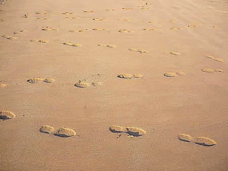Zig zag journey of footprints through the sand, South West England Stock Photo