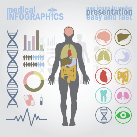 Medical infographics. Presentation set. Human body with internal organs plus buttons. Diagram (graph), cardio gram. Vector