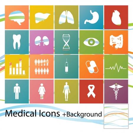bowel: Set di icone di stile minimal medici Vettoriali