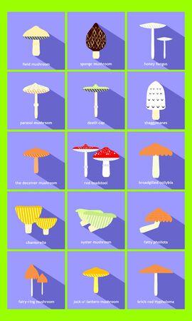 in common: most common mushrooms