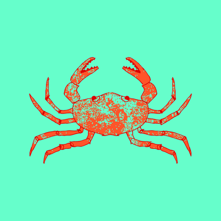 cangrejo  Ilustración de vector