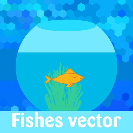 fish in ball Illustration