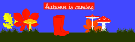 wellingtons: Autumn is coming