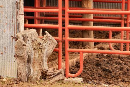 Stall Фото со стока