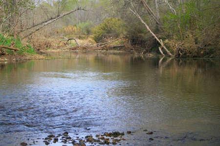 Creek waters