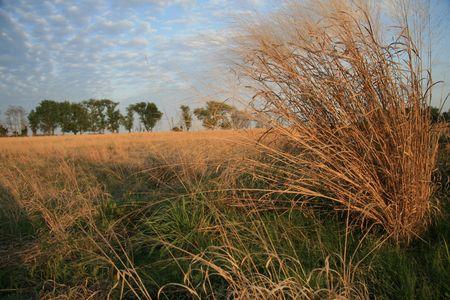 Prairie landscape Stock fotó