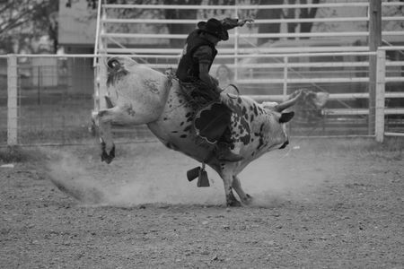 arena rodeo: Kicking it up cowboy style Stock Photo