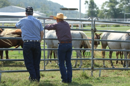 A couple of ranchers talking about horses at an auction Imagens