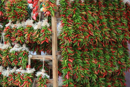 chiles secos: Fresh ristras de chile