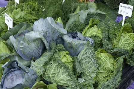 produce energy: Basils, dill and cabbages