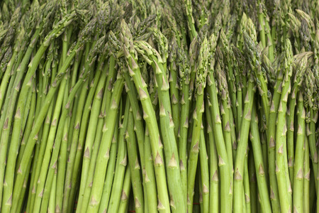 Bunches of fresh harvested asparagus