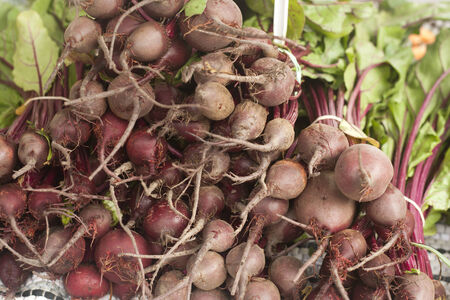Bunches of beets for sale at an outdoor market Stock Photo