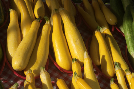 Yellow squash at an outdoor market