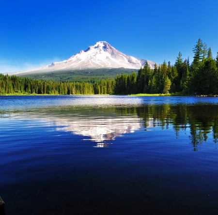 The Mount Hood reflection in Trillium Lake  版權商用圖片
