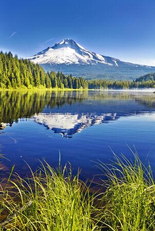 Beautiful Trillium Lake and Mt Hood Imagens