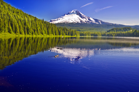 Beautiful Trillium Lake and Mt Hood 스톡 콘텐츠