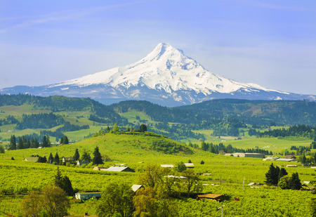 portland oregon: Hood River Valley Stock Photo