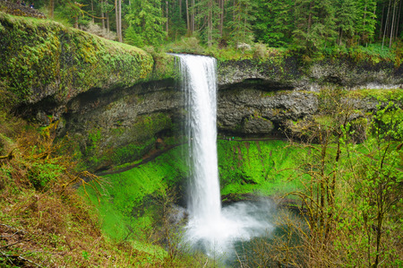 The Beautiful View Of Silver Falls Stock Photo