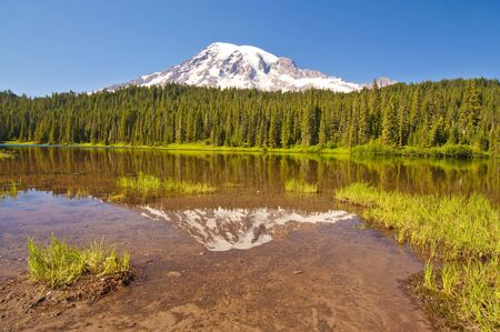 mt  hood national forest: Beautiful reflection lake