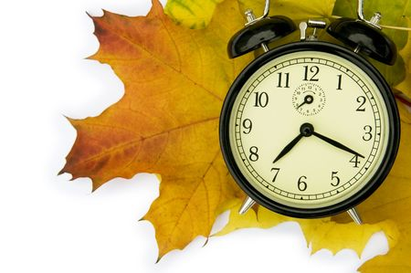 senescence: Autumn time.  Stock Photo