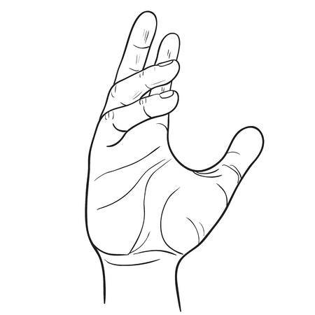 Hand with bent fingers gestures. Vector illustration of linear black and white. Template of the gesture of the hand which holds the object. Illustration