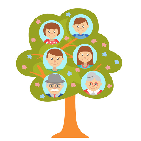 family history: Cartoon generation family tree illustaration isolated on white background. Family tree in flat style grandparents parents and children. Illustration
