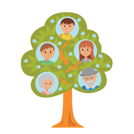 Cartoon generation family tree illustaration isolated on white background. Family tree in flat style grandparents parents and little boy. Illustration
