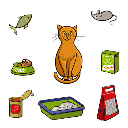 kitty: Red cat and accessories for care. Vector illustration on white background