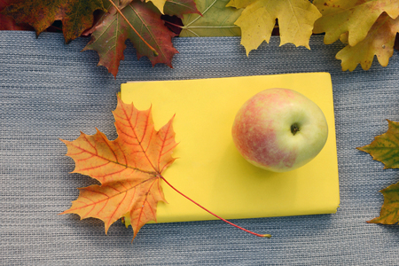 Autumn maple leaves with apple and book.