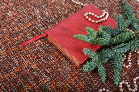 Holiday decoration with pearls, pearl beads, fir-tree branches and red book. Background, copy space. Zdjęcie Seryjne