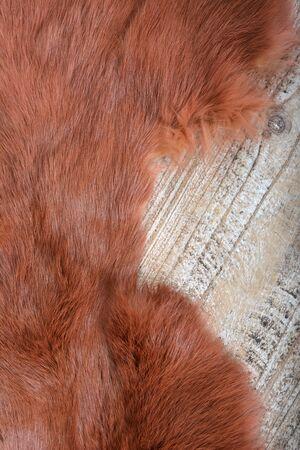 background texture of fur. rabbit brown fur