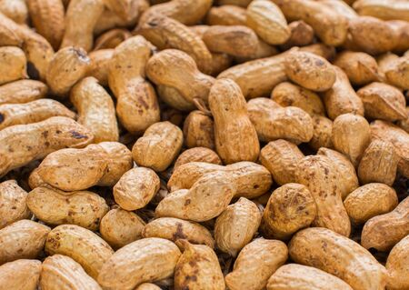 Roasted groundnut in shell. Background